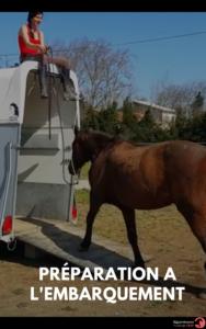 les clés d'un cheval bien eduqué (1)