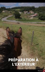 les clés d'un cheval bien eduqué (3)